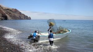 Pesca de langosta roja del Pacífico